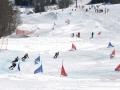 skicross_006