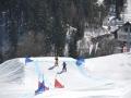 skicross_010